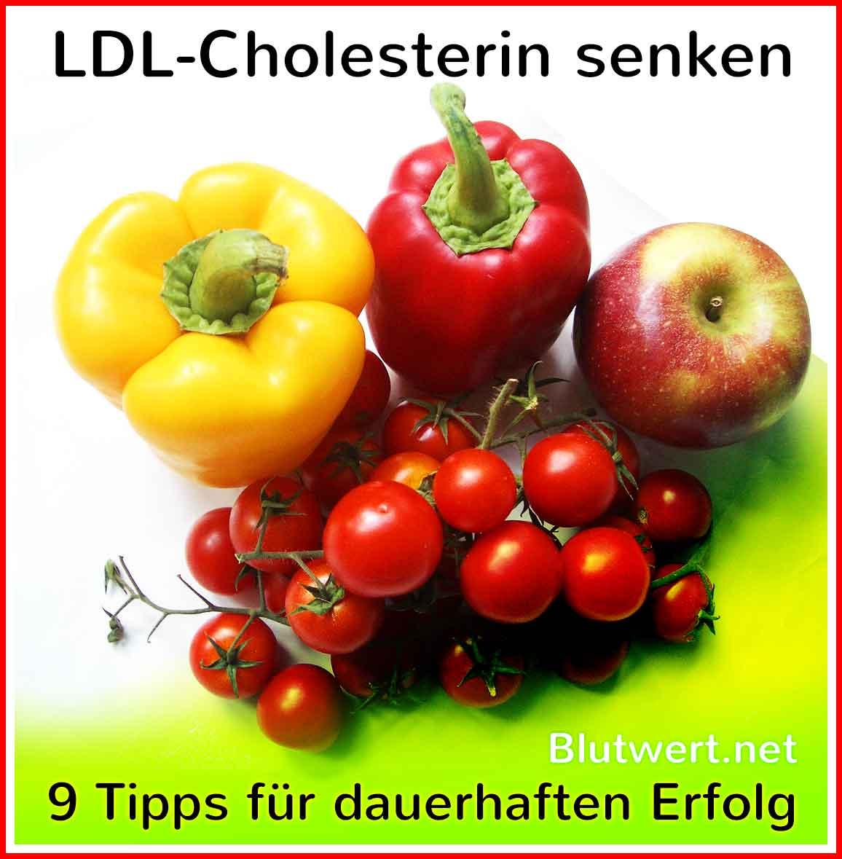 cholesterin senken mit wirkstoffen aus der natur