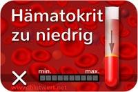 Blutbild Hkt