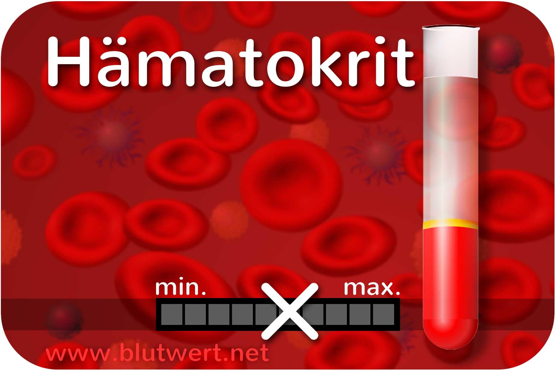 Hkt Blutwert
