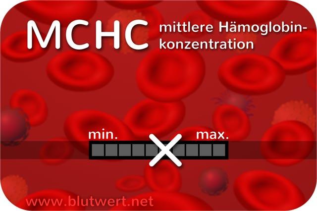 Blutwerte Hgb