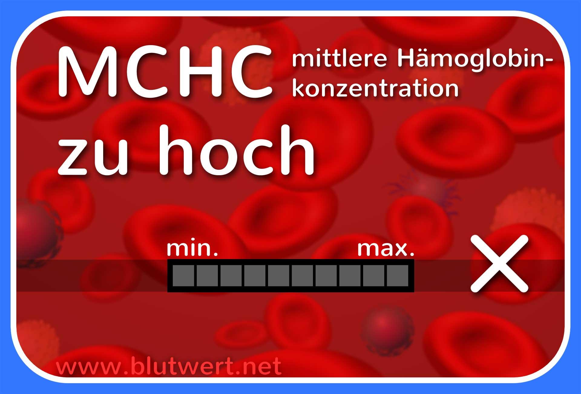 Hgb Blutwert