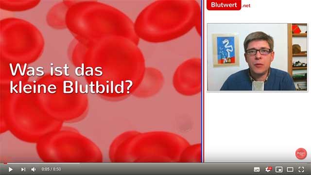 Was Gehört Zum Großen Blutbild